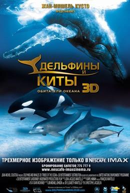 Постер фильма Дельфины и киты 3D (2008)