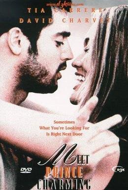 Постер фильма Мистер Очарование (2002)