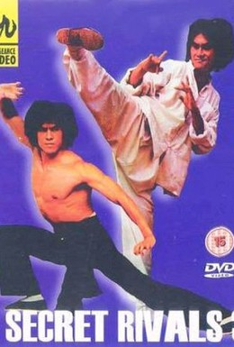 Постер фильма Тайные соперники 3 (1981)