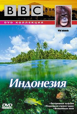 Постер фильма BBC: По странам и континентам. Индонезия (1999)