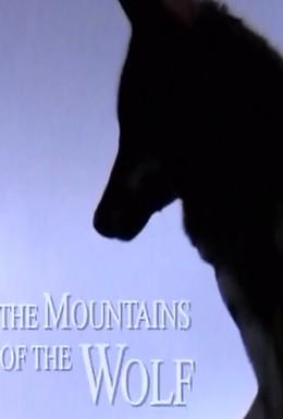 Постер фильма Волчьи горы (2003)