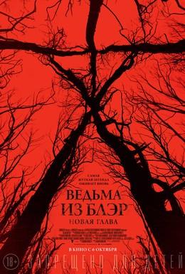 Постер фильма Ведьма из Блэр: Новая глава (2016)