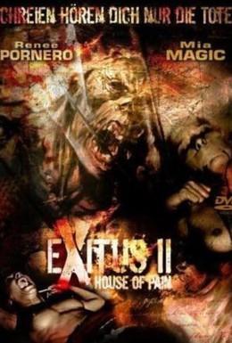 Постер фильма Прерванная жизнь 2: Дом боли (2008)