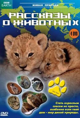 Постер фильма Рассказы о животных (2008)