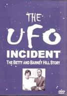 Инцидент с НЛО (1975)