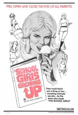 Постер фильма Доклад о школьницах 3: То, о чём родители даже не подозревают (1972)