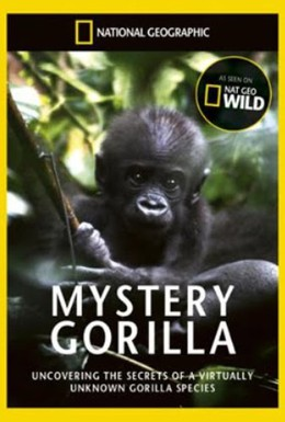 Постер фильма Тайна горилл (2010)