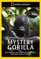 Тайна горилл (2010)