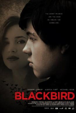Постер фильма Чёрный дрозд (2012)