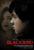 Чёрный дрозд (2012)