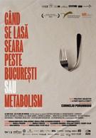 Когда в Бухаресте наступает вечер, или Метаболизм (2013)