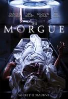 Морг (2008)
