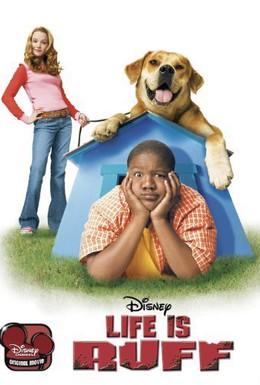Постер фильма Лучший пес (2005)
