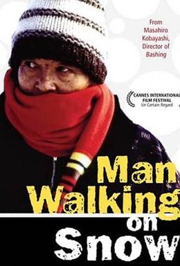 Постер фильма Идущий по снегу (2001)