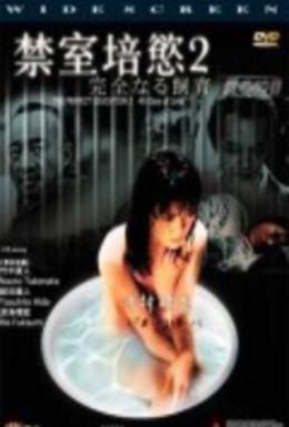 Постер фильма Идеальное образование 2: 40 дней любви (2001)