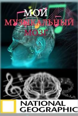 Постер фильма Мой музыкальный мозг (2009)