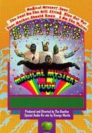 Волшебное таинственное путешествие (1967)