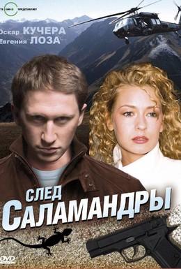 Постер фильма След саламандры (2009)