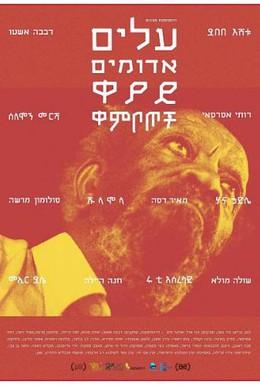 Постер фильма Красные листья (2014)
