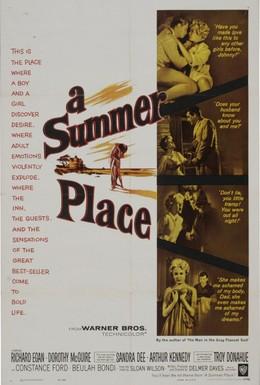 Постер фильма Летнее место (1959)