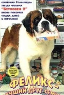 Постер фильма Феликс – лучший друг семьи (1997)