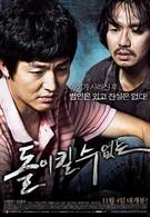 Непоправимое (2010)