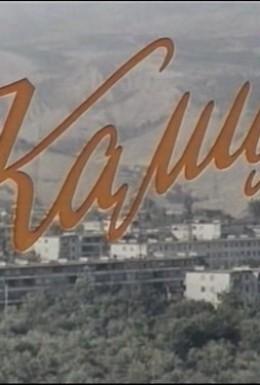 Постер фильма Камила (1980)