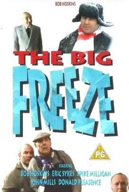 Постер фильма Большая заморозка (1993)
