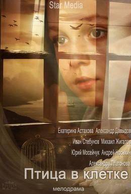 Постер фильма Птица в клетке (2013)