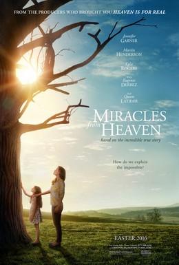 Постер фильма Чудеса с небес (2016)
