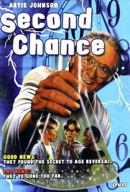 Постер фильма Второй шанс (1996)