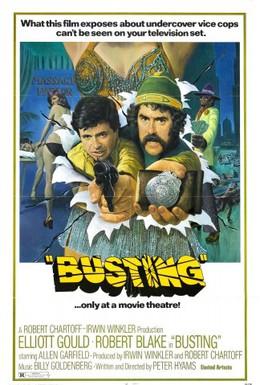 Постер фильма Ещё один арест (1974)
