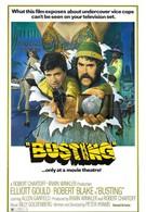 Ещё один арест (1974)
