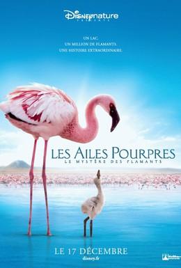 Постер фильма Пурпурные крылья: Тайна фламинго (2008)