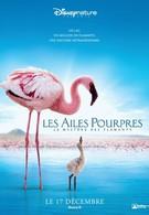 Пурпурные крылья: Тайна фламинго (2008)