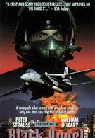 Полёт чёрного ангела (1991)
