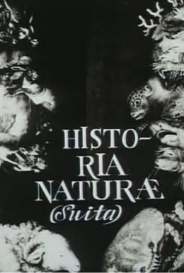 Постер фильма Естественная история (1967)