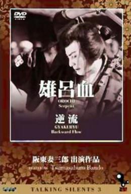 Постер фильма Против течения (1924)