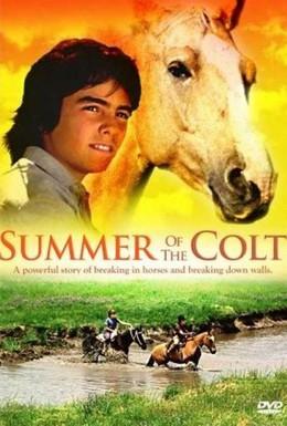 Постер фильма Фьерро... Тайны одного лета (1989)