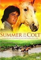 Фьерро... Тайны одного лета (1989)