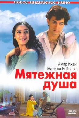 Постер фильма Мятежная душа (1999)