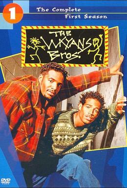 Постер фильма Братья Уэйэнсы (1995)