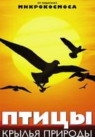 Птицы: Крылья природы (2002)