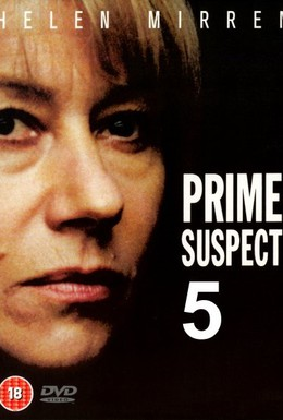 Постер фильма Главный подозреваемый 5: Судебные ошибки (1996)