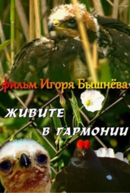 Постер фильма Живите в гармонии (2003)