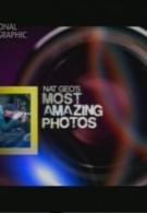 Самые удивительные фотографии National Geographic (2009)