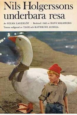 Постер фильма Чудесное путешествие Нильса Хольгерсона (1962)