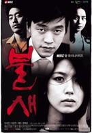 Феникс (2004)