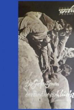 Постер фильма Пленники Барсова ущелья (1956)