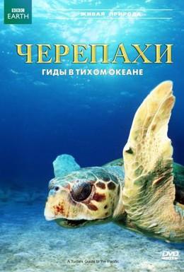 Постер фильма Черепахи: Гиды в Тихом океане (2008)